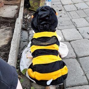 Pet Halloween costume